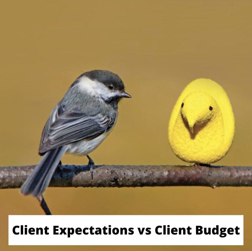 Client Expectations vs Client Budget