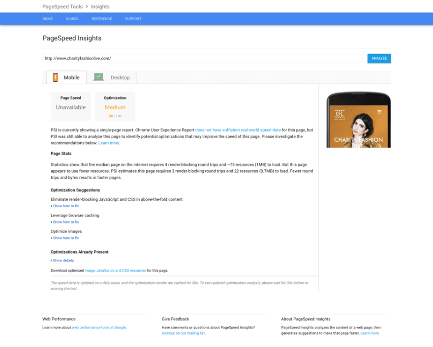 Example of Google PageSpeed Insights rating