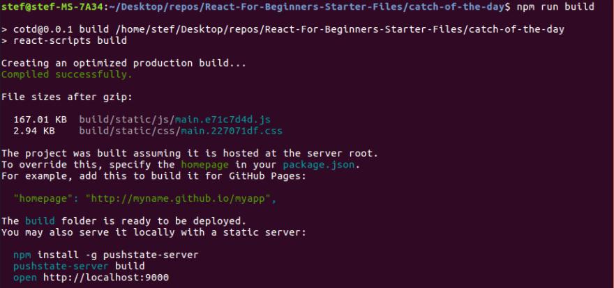 Terminal output after running npm run build