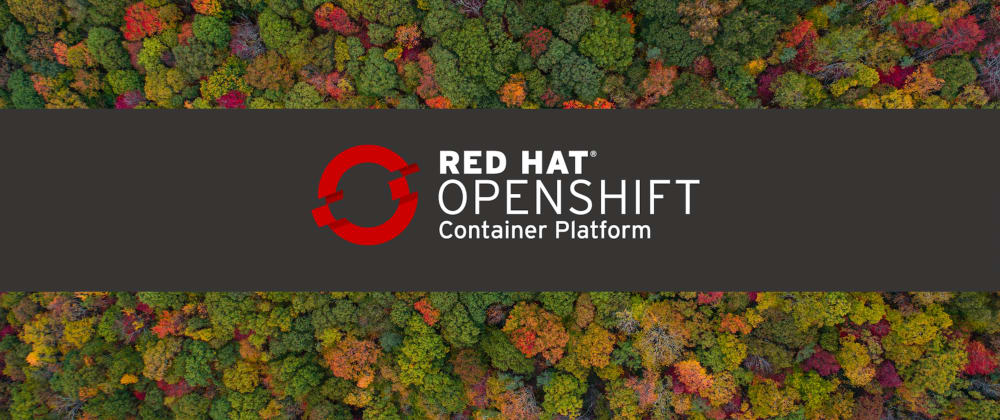 Cover image for Troubleshooting OpenShift Clusters and Workloads