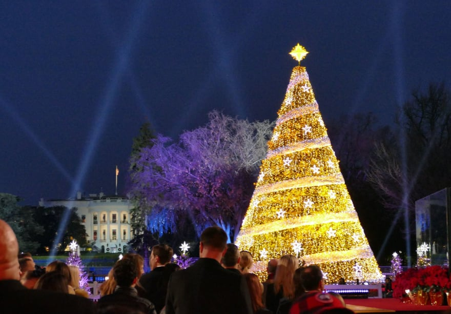 The US National Mall with a Christmas tree lit up at night.