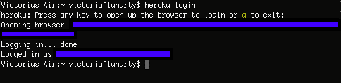screenshot of terminal after successful login