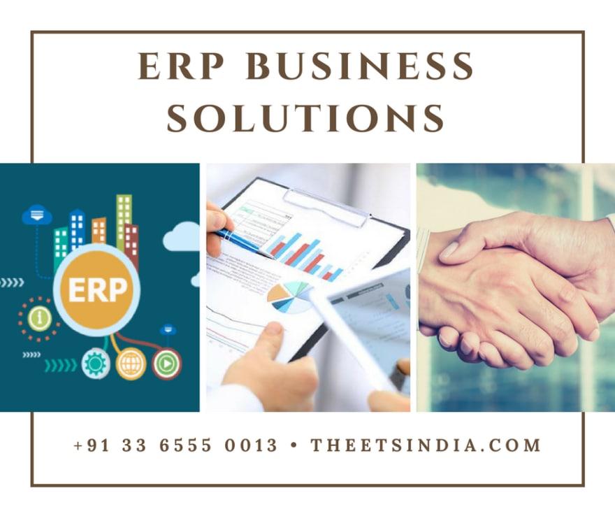Custom ERP Development