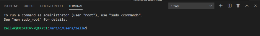 Visual Studio Code Integrated Terminal shows the mount path.