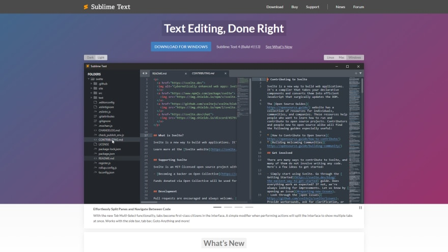 Sublime text best productivity tools for programmers