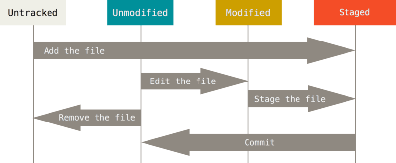 ciclo commit