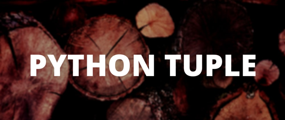 Cover image for Python Tuples