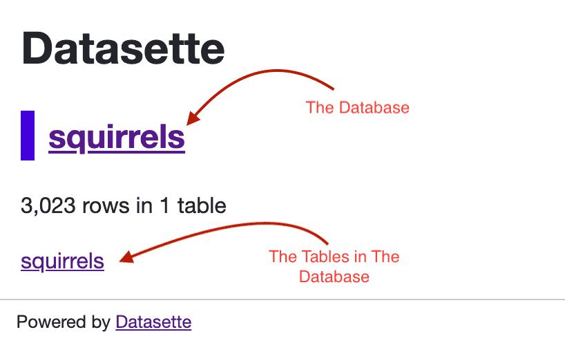 Local Datasette Index