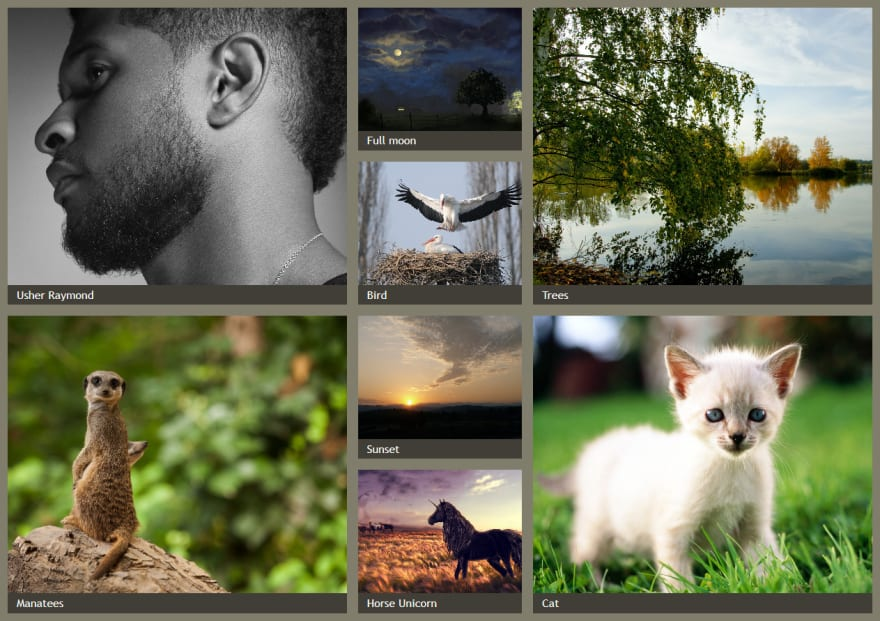 An image gallery with CSS Grid