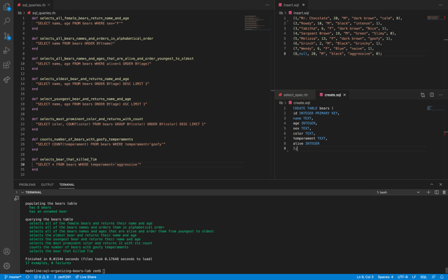 Screenshot of VS Code where Zed is showing the code he's written to pass the Flatiron provided tests