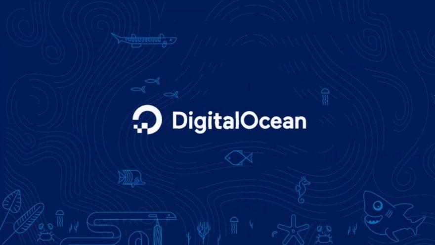 DigitalOcean is a budget cloud platform for start-ups https://medium.com/brainstation23/reduce-cost-in-digital-ocean-cloud-for-startups-e6855e895c6e