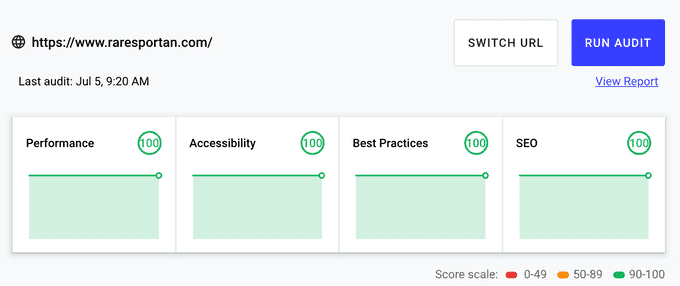The performance score of this website