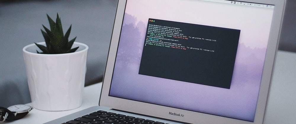Cover image for Lean ZSH terminal