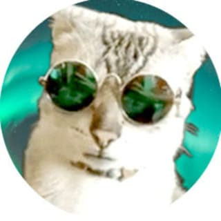 Kai profile picture