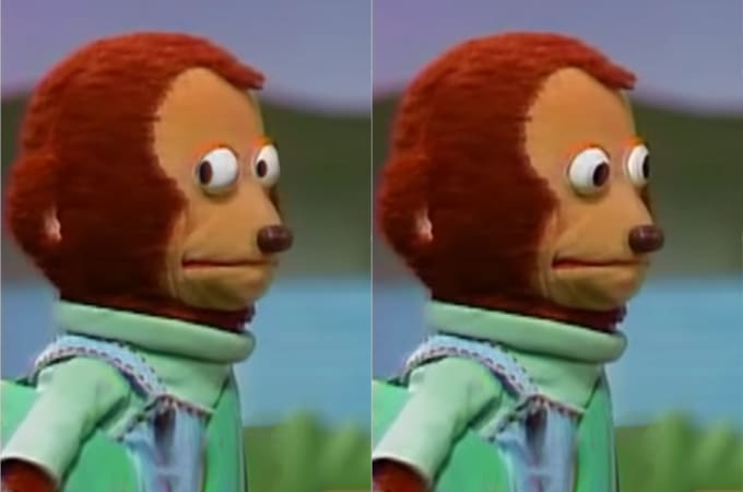 Monkey puppet looks offscreen at something, then looks away like it didn't see anything.