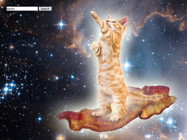 Picture of cat with bacon