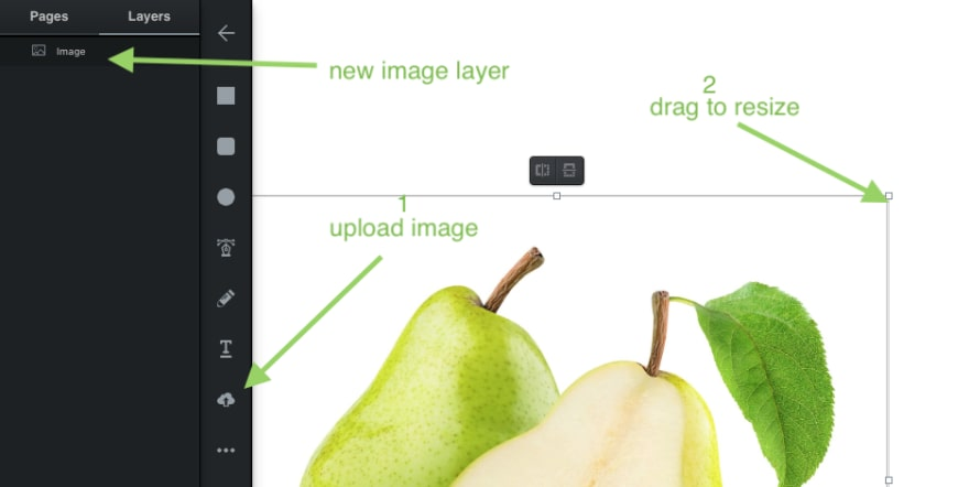 vectr with image