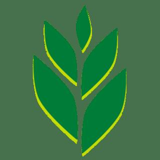 Tropical BioEnergy profile picture