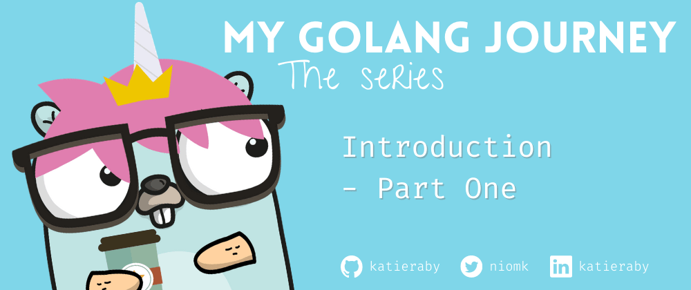 Cover image for Introduction to My Golang Journey