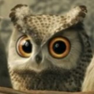 Owlypixel profile picture