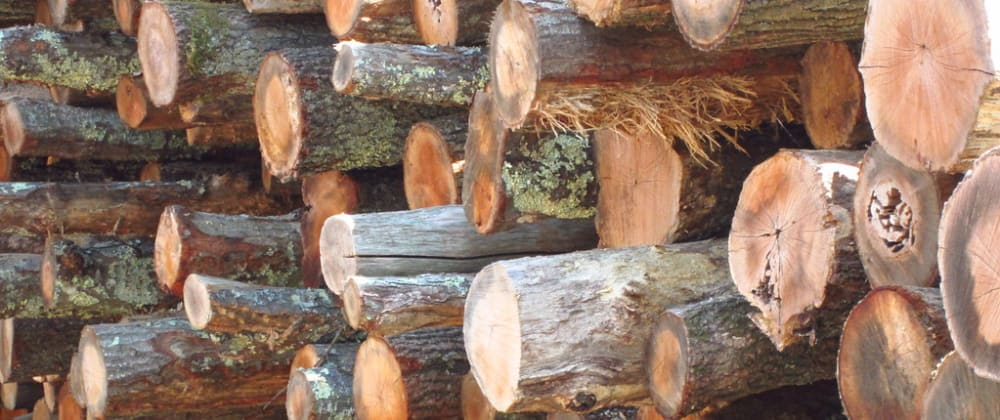Cover image for Effective Logging