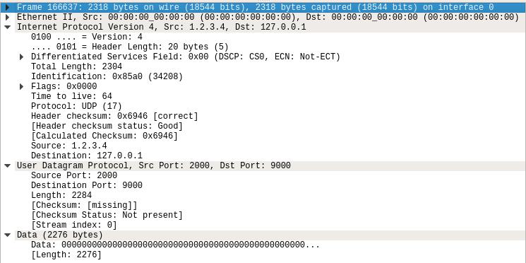 Packet headers and data seen in wireshark