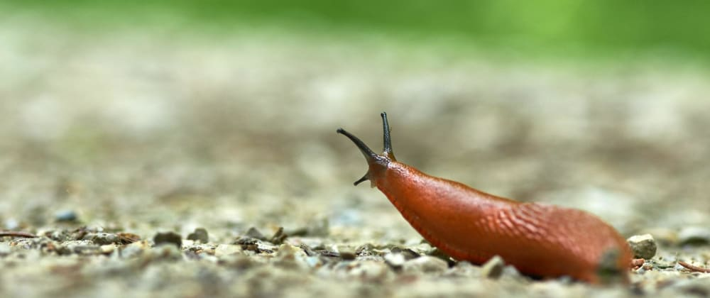 Cover image for Generating Random Human-Readable Slugs in JavaScript
