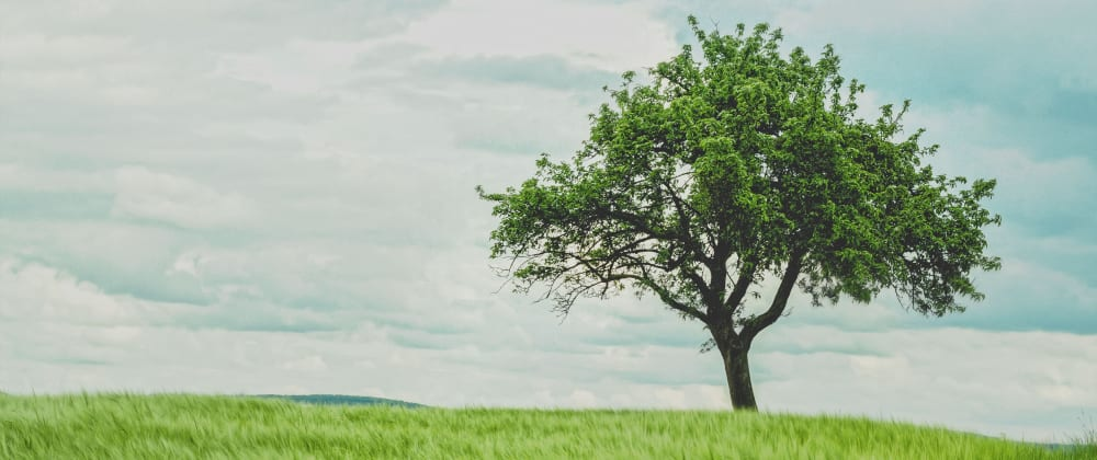 Cover image for Building A React Folder Tree Component