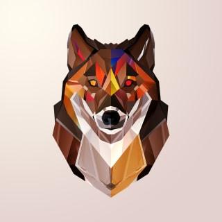 User_name profile picture
