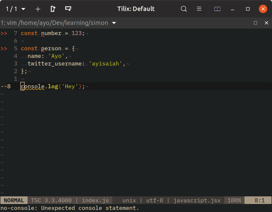 Linting JavaScript with ALE in Neovim