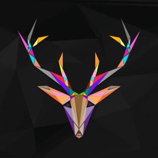T profile picture
