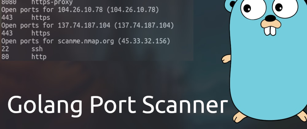 Cover image for Build a Port Scanner in Golang