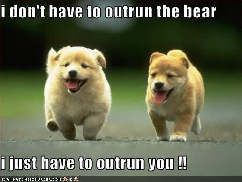 Outrunning a bear joke