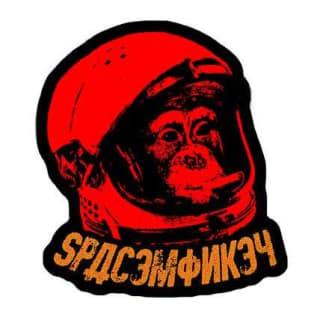 sp4c3m0nk3y profile picture