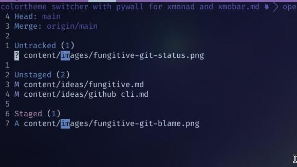 fungitive-git-status-2.png
