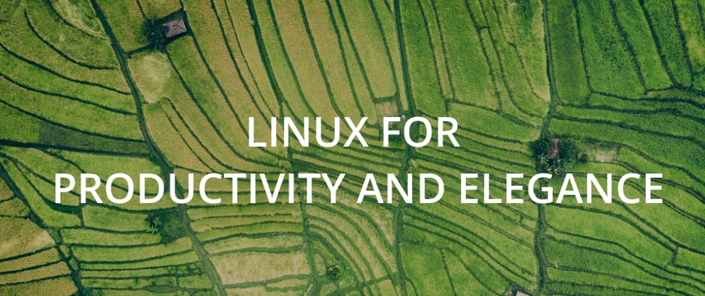 Cover image for Linux for productivity and elegance