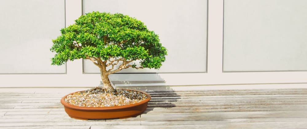 Cover image for The satisfaction in treating your side projects like bonsai