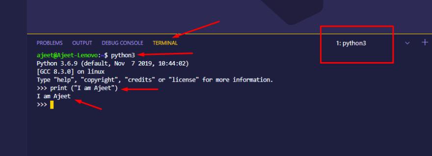 Test Python Interpreter