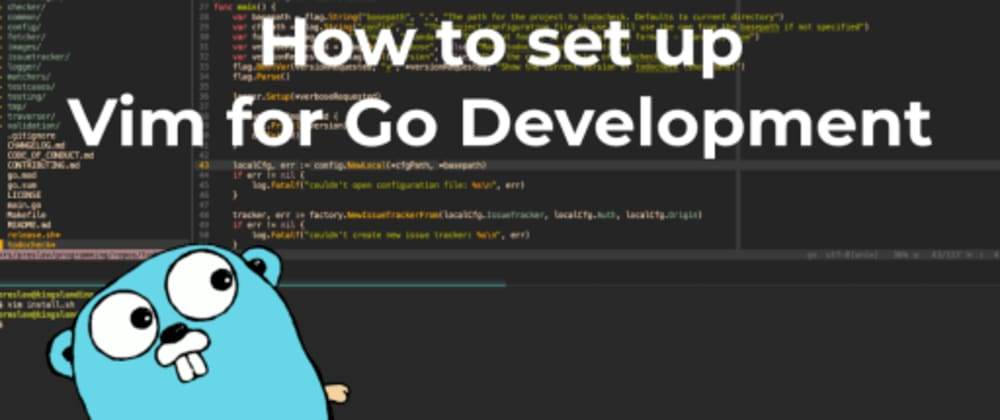Cover image for How to set up Vim for Go Development
