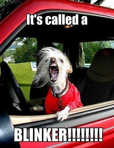 It's called a blinker!