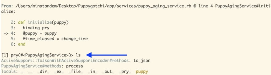 pry context output for puppy aging service object