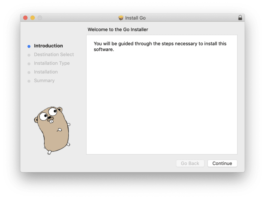 golang installation step1