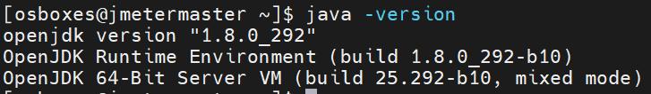 Java version check