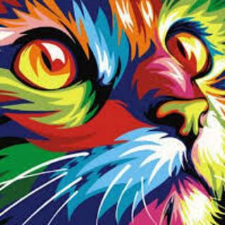 Psyche Cat profile picture