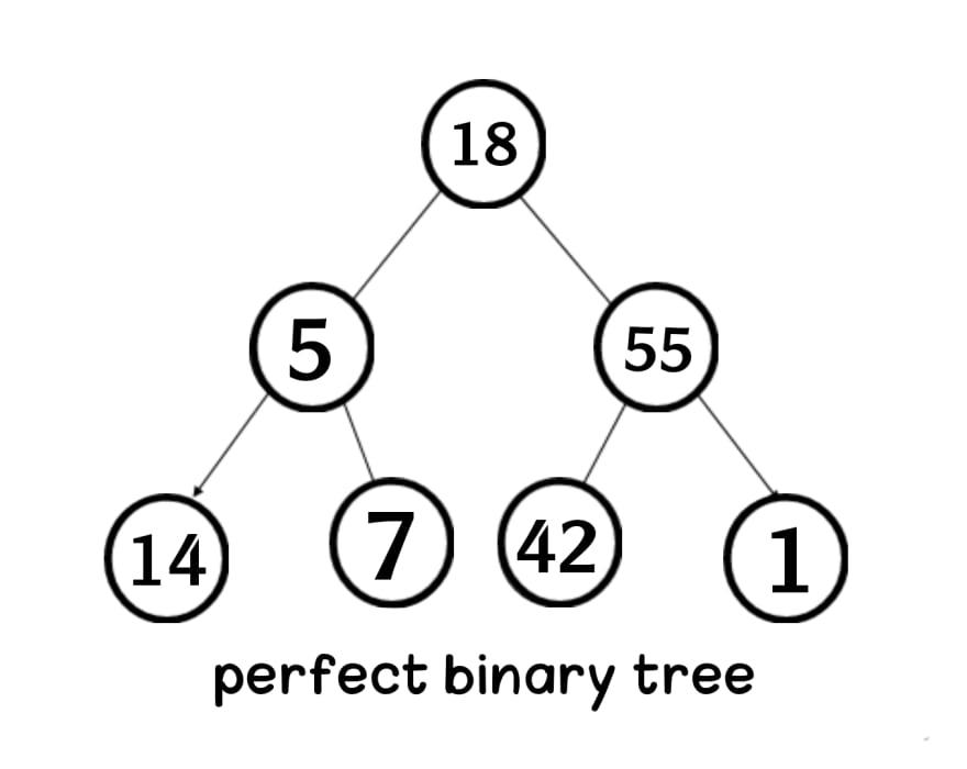perfect binary tree in data structure Aya Bouchiha