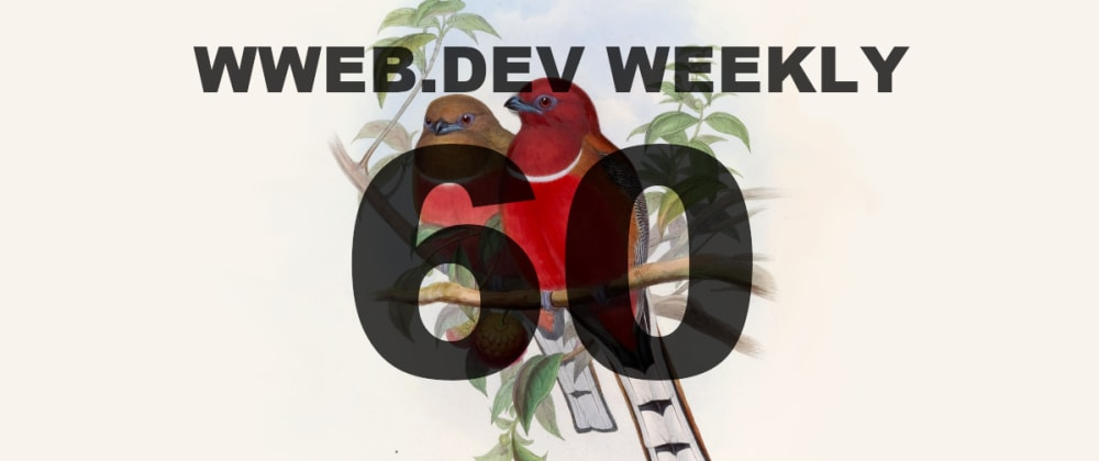 Cover image for Weekly web development update #60