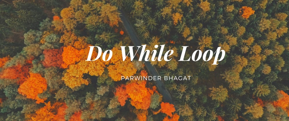Cover image for JavaScript: Do While Loop