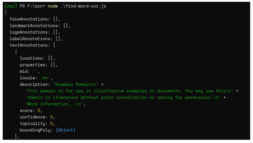 terminal output using google ocr api
