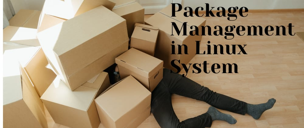 Cover image for Package Management in Linux System