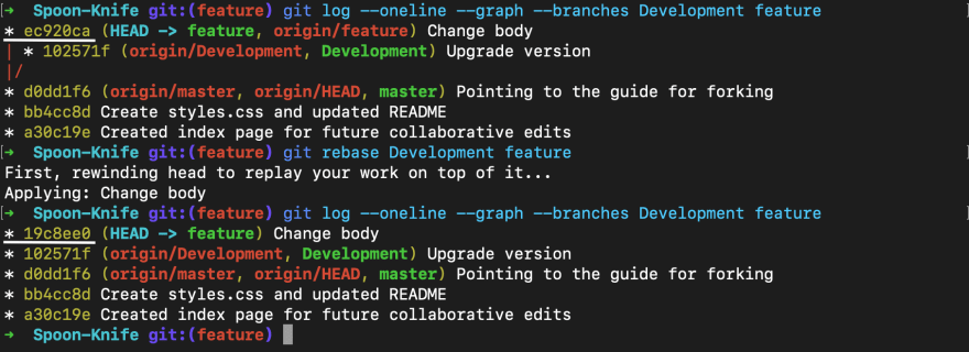 Screenshot of git log of diverged branches before and after git rebase